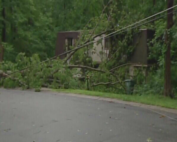 "<div class=""meta ""><span class=""caption-text "">A tree fell in the 1100 block of Ralph Drive in Cary. (WTVD Photo)</span></div>"