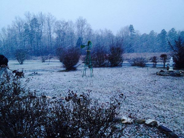 Snow falls across central North Carolina. <span class=meta>(WTVD Photo&#47; ABC11 user submitted image.)</span>