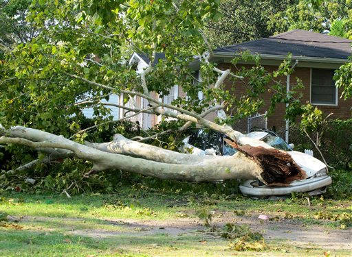 A tree toppled by the winds of Hurricane Irene rests on a car in Wilmington, N.C., on Sunday, Aug. 28, 2011.  <span class=meta>(AP Photo&#47; Bruce Smith)</span>