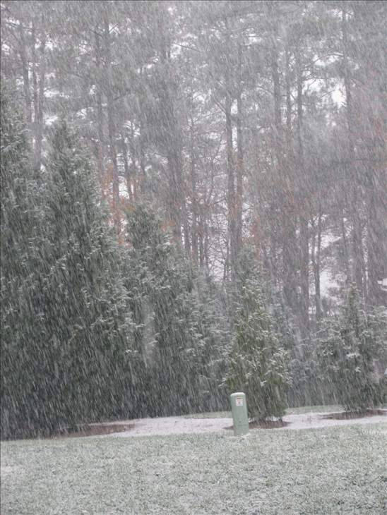 "<div class=""meta image-caption""><div class=""origin-logo origin-image ""><span></span></div><span class=""caption-text"">Snow photos submitted by ABC11 viewers from around the Triangle (WTVD Photo/ ABC11 Viewer submitted)</span></div>"