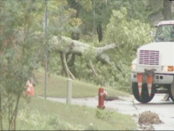 "<div class=""meta image-caption""><div class=""origin-logo origin-image ""><span></span></div><span class=""caption-text"">Workers remove a fallen tree in Cary that took out power lines. (WTVD Photo/ Mat Mendez)</span></div>"