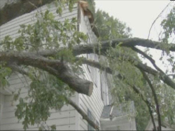 A tree fell on this Garner home Thursday causing minor damage. <span class=meta>(WTVD Photo&#47; Mat Mendez)</span>
