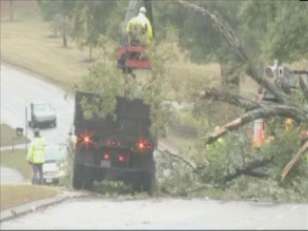 "<div class=""meta ""><span class=""caption-text "">Workers chop up and remove a fallen tree Thursday morning. (WTVD Photo/ Mat Mendez)</span></div>"