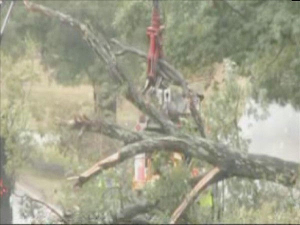 "<div class=""meta image-caption""><div class=""origin-logo origin-image ""><span></span></div><span class=""caption-text"">Workers chop up and remove a fallen tree Thursday morning. (WTVD Photo/ Mat Mendez)</span></div>"