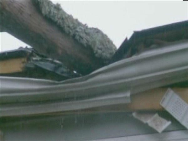 A large limb fell on a home on Gladstone Drive in Durham Friday morning.  <span class=meta>(WTVD Photo)</span>