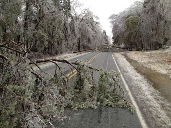 A blast of rain, sleet, and ice brought down trees and caused thousands of power outages across the region. Seeing damage where you are? Send your pictures to iwitness@abc11mail.com. <span class=meta>(Photo&#47;ABC11 iWitness photo)</span>
