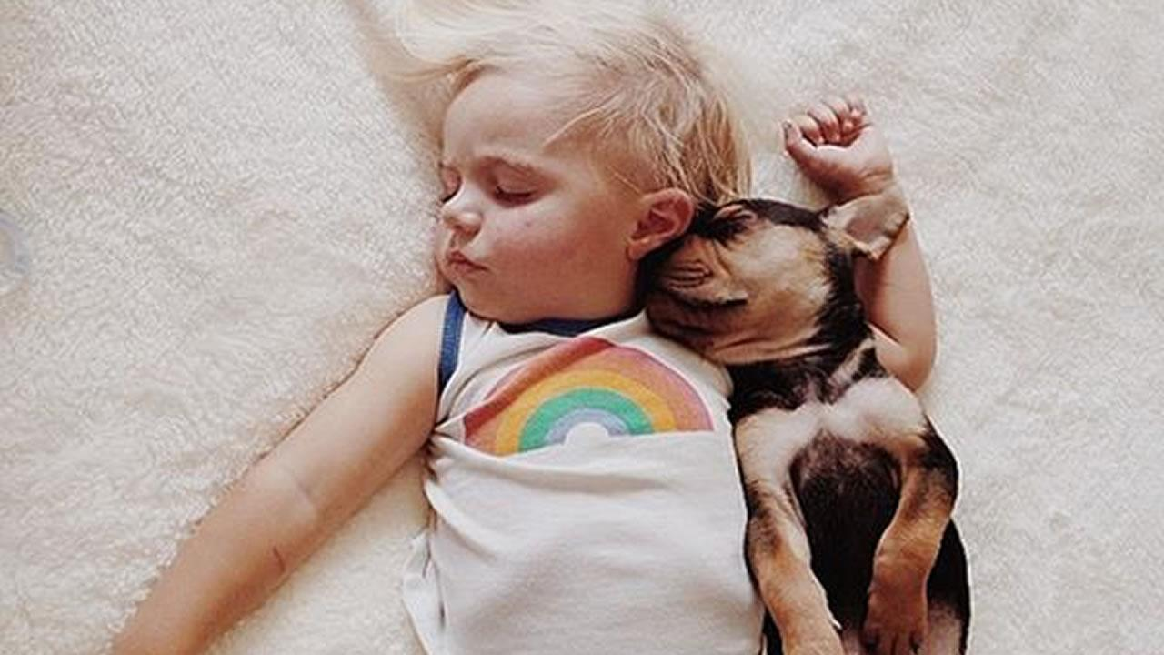 Mom Jessica Shyba has captured these cute moments of Theo and Beaus adorable naps together. <span class=meta>(Jessica Shyba - www.MommasGoneCity.com)</span>