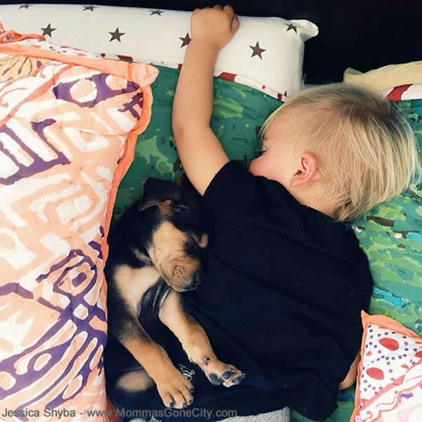 Mom Jessica Shyba has captured these cute moments of Theo and Beau&#39;s adorable naps together.  <span class=meta>(Photo&#47;Jessica Shyba - www.MommasGoneCity.com)</span>