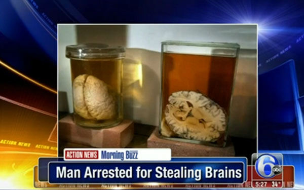 "<div class=""meta image-caption""><div class=""origin-logo origin-image ""><span></span></div><span class=""caption-text"">I'm in for... mailing brains  How it got him arrested: A man arrested for stealing brains from a museum was discovered when the person who bought them online called in the crime.  Moral of the story: Be careful who you share your brain with. (Photo/WPVI)</span></div>"