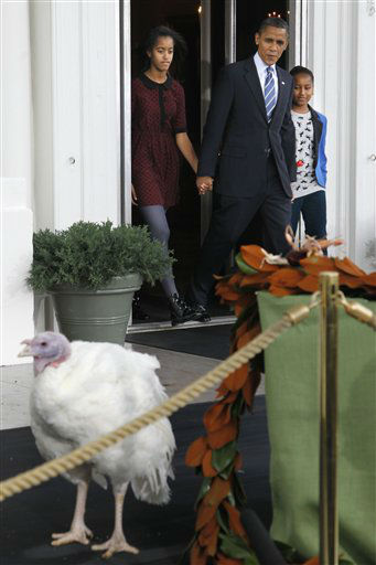 "<div class=""meta image-caption""><div class=""origin-logo origin-image ""><span></span></div><span class=""caption-text"">President Barack Obama walks with daughters Sasha and Malia to pardon Liberty, a 19-week old, 45-pound turkey, on the occasion of Thanksgiving, Wednesday, Nov. 23, 2011, on the North Portico of  the White House in Washington.  (AP Photo/ Pablo Martinez Monsivais)</span></div>"