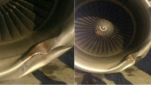 Bird leaves a dent in the engine Headache factor: 3  A pilot headed into New York City declared an emergency when he smelled smoke in the plane. Turns out it was caused by a bird strike, a not-uncommon occurrence in heavy air traffic areas like New York. Fortunately no one was hurt, but pictures from the incident are a reminder that birds can be a real safety threat.  Next up: Passengers revolt <span class=meta>(Photo&#47;WABC)</span>