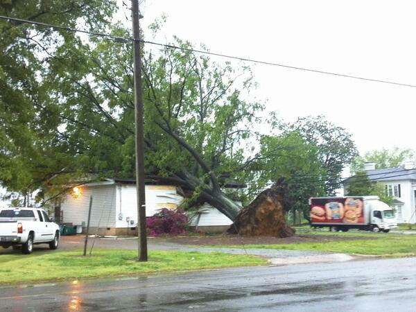 Numerous trees have been reported down and power is out to parts of the Triangle after heavy storms. <span class=meta>(WTVD Photo)</span>