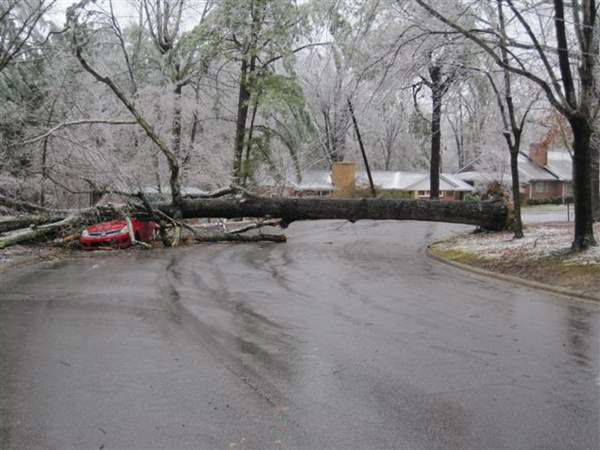 "<div class=""meta image-caption""><div class=""origin-logo origin-image ""><span></span></div><span class=""caption-text"">A blast of rain, sleet, and ice brought down trees and caused thousands of power outages across the region. Seeing damage where you are? Send your pictures to iwitness@abc11mail.com. (ABC11 iWitness photo)</span></div>"
