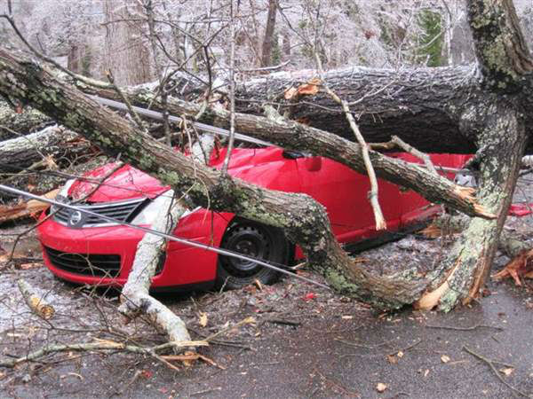 A blast of rain, sleet, and ice brought down trees and caused thousands of power outages across the region. Seeing damage where you are? Send your pictures to iwitness@abc11mail.com. <span class=meta>(ABC11 iWitness photo)</span>
