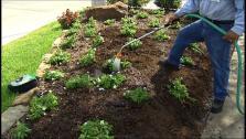Lower Water Bill with Garden Upgrades