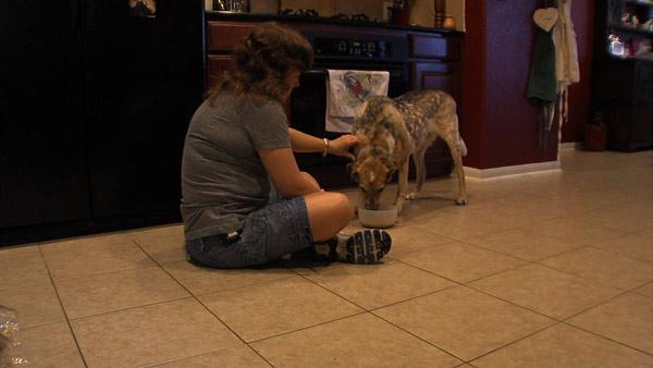 Saving Money on Pet Medication