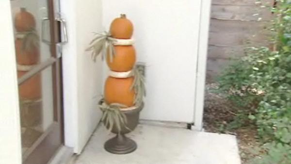 Web Exclusive: Do-It-Yourself Topiary