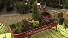 How to Make a Miniature Fairy Garden
