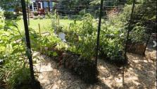 Save Money with Straw Bale Gardening
