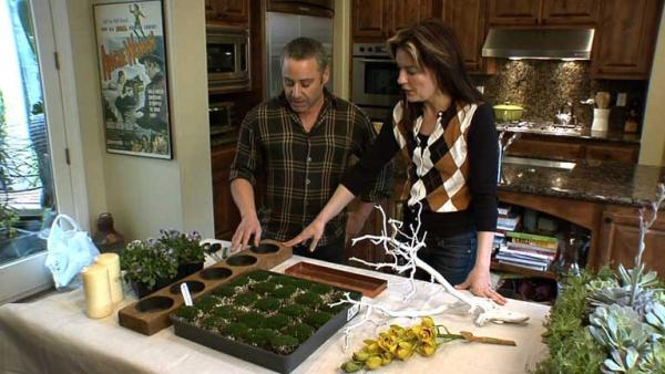 Home with Lisa Quinn: Home Gardening and Decor | The Live Well Network