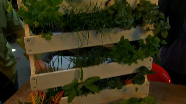 Make Your Own Herb Rack