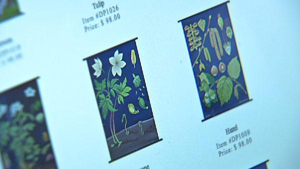 Web Exclusive: Botanical Prints