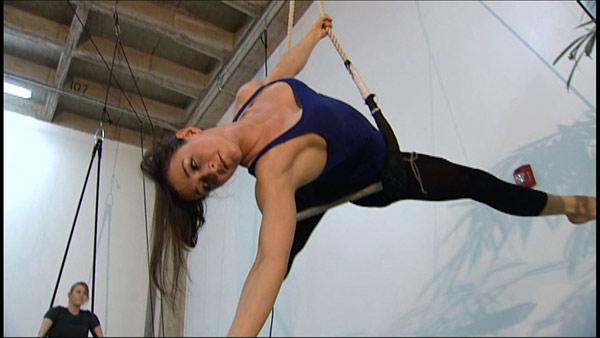Trapeze Workout
