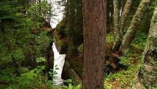Unplanned Hike