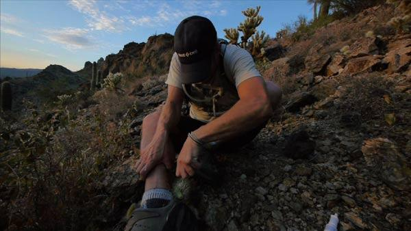 Extra Footage: Cholla Cactus Attack