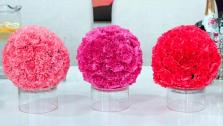 DIY Carnation Spheres with Nia Vardalos