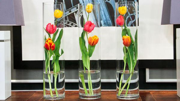 Spring Cleaning And Organizing >> 4 Easy Tulip Arrangements | Steven and Chris | The Live Well Network